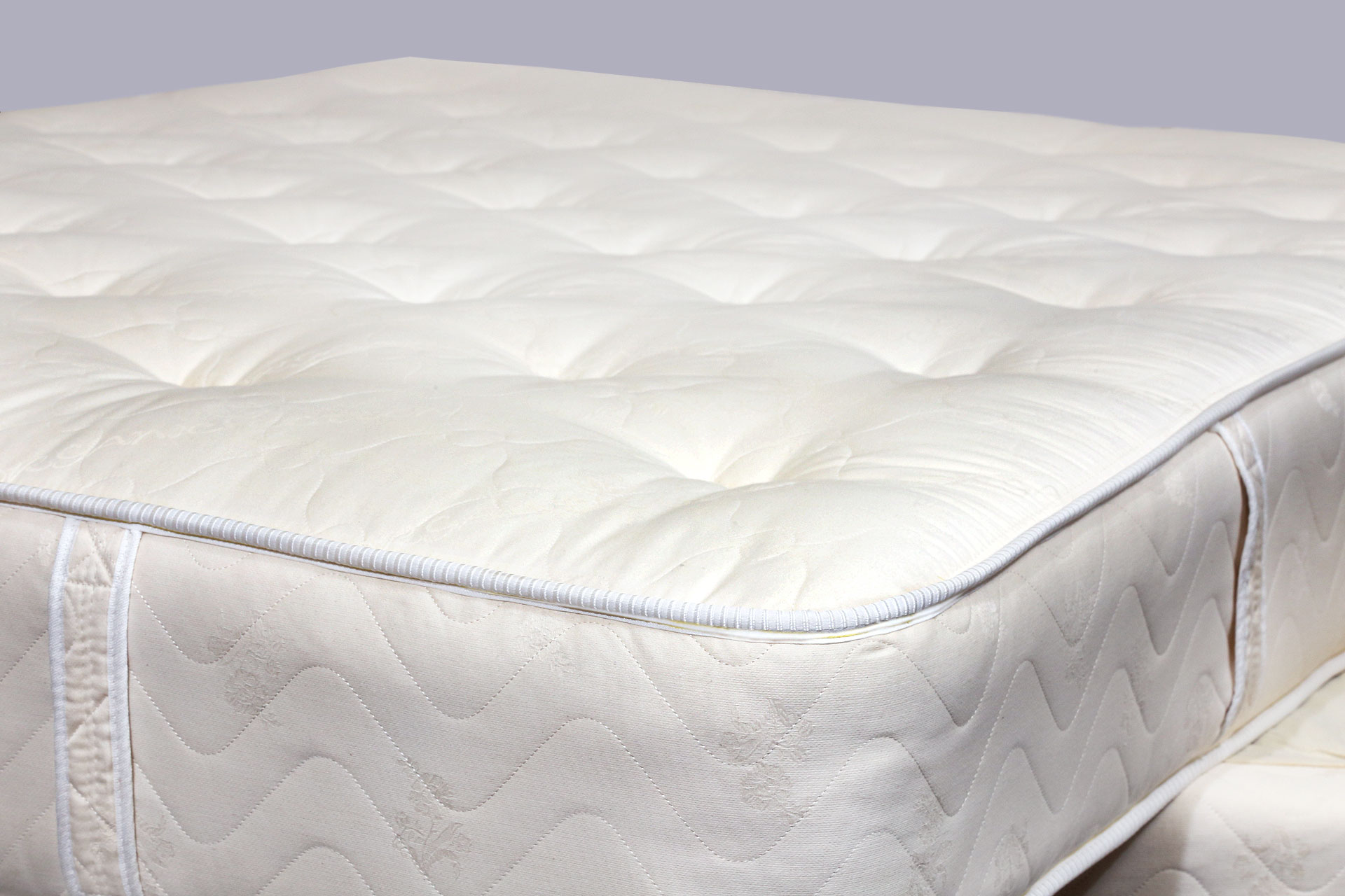 competitive now has prices mattresses inch the plus mattress futon lily com for organic most
